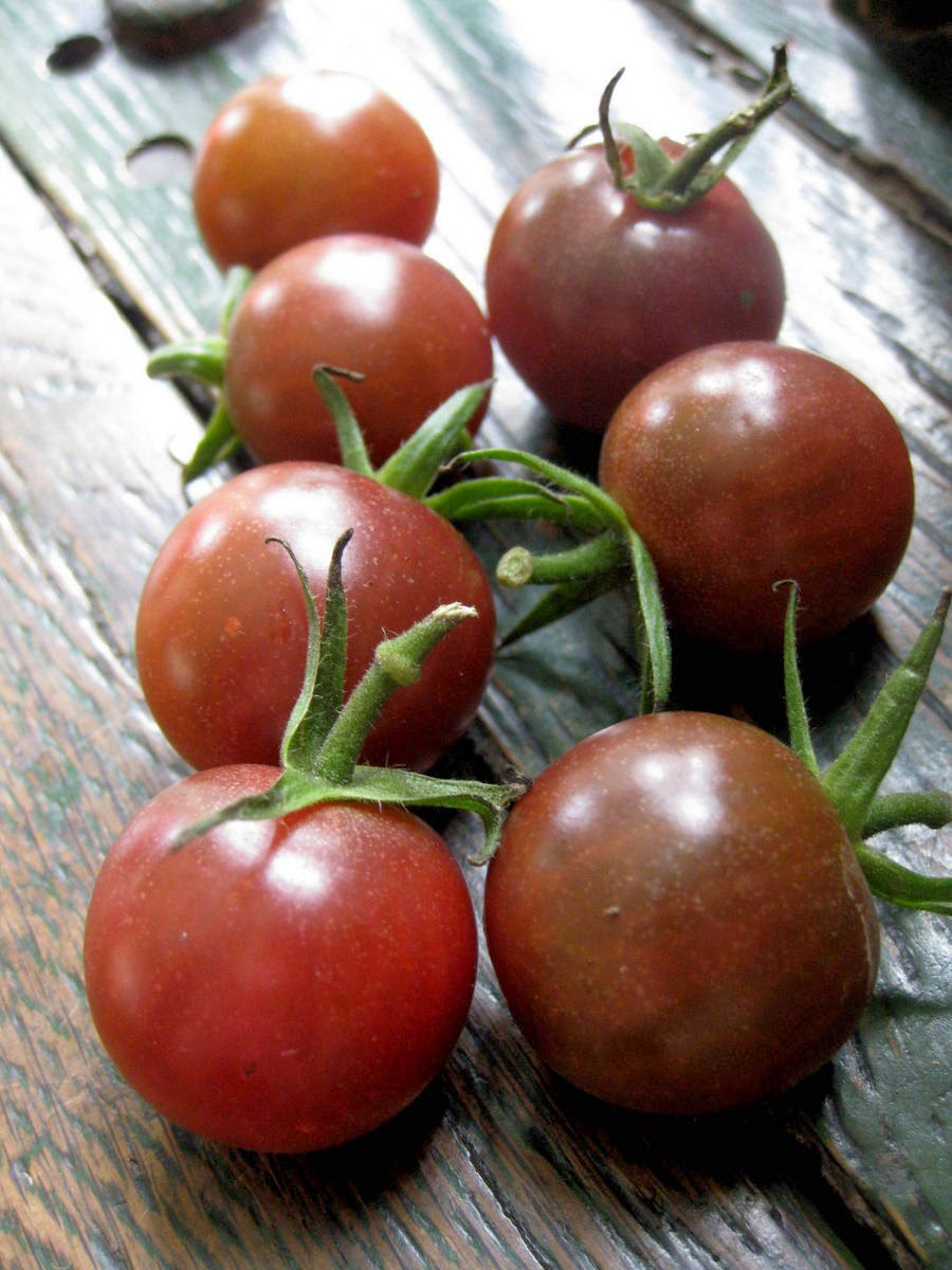 mostly tomato mania choosing my cherry tomato favourites. Black Bedroom Furniture Sets. Home Design Ideas