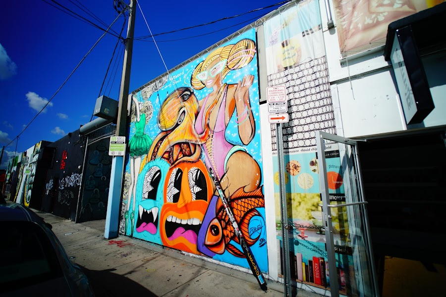 Colorful murals around Wynwood streets, Miami