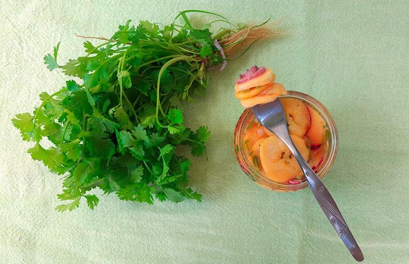 Receita fácil e vegan para um happy hour: ceviche de banana-da-terra