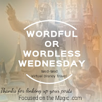 Focused on the Magic Wordful or Wordless Wednesday Blog Hop