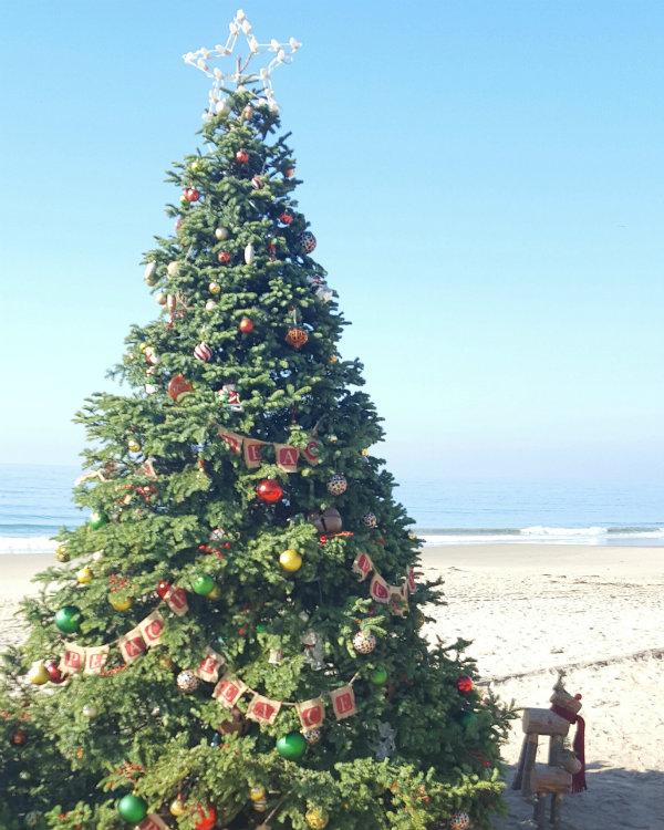 Ciao Newport Beach