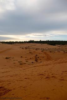 Les dunes de sable rouges à Mui Ne au Vietnam
