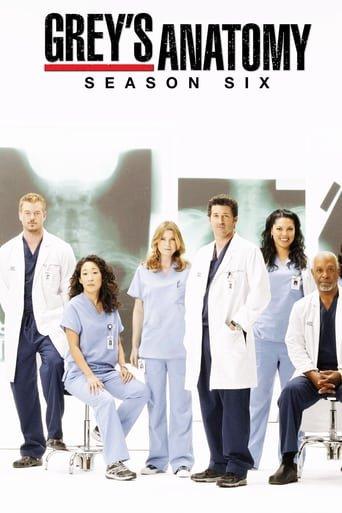 Anatomia de Grey Temporada 6 audio latino
