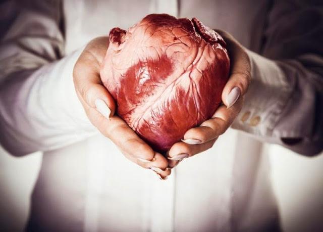 سؤال لم يخطر على بال احد من قبل : لماذا لا يصاب القلب بالسرطان ؟! وما السبب في ذلك !