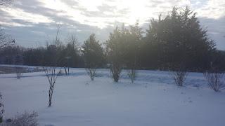 Arkansas snow