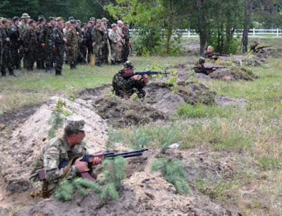 Волинські партизани