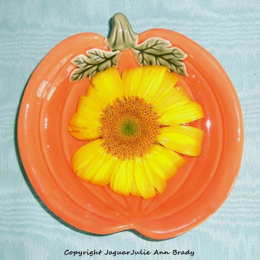 Sunflower in a Orange Pumpkin Dish