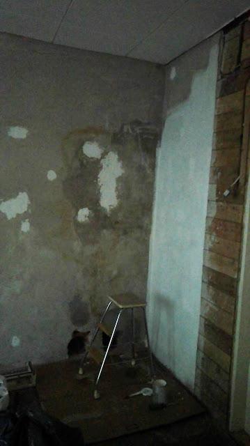 muuri_maalaus_muurimaali_rintamamiestalo_remontti