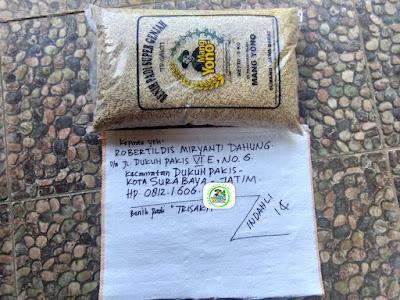 Benih pesanan ROBERTILDIS Surabaya, Jatim.   (Sebelum Packing)