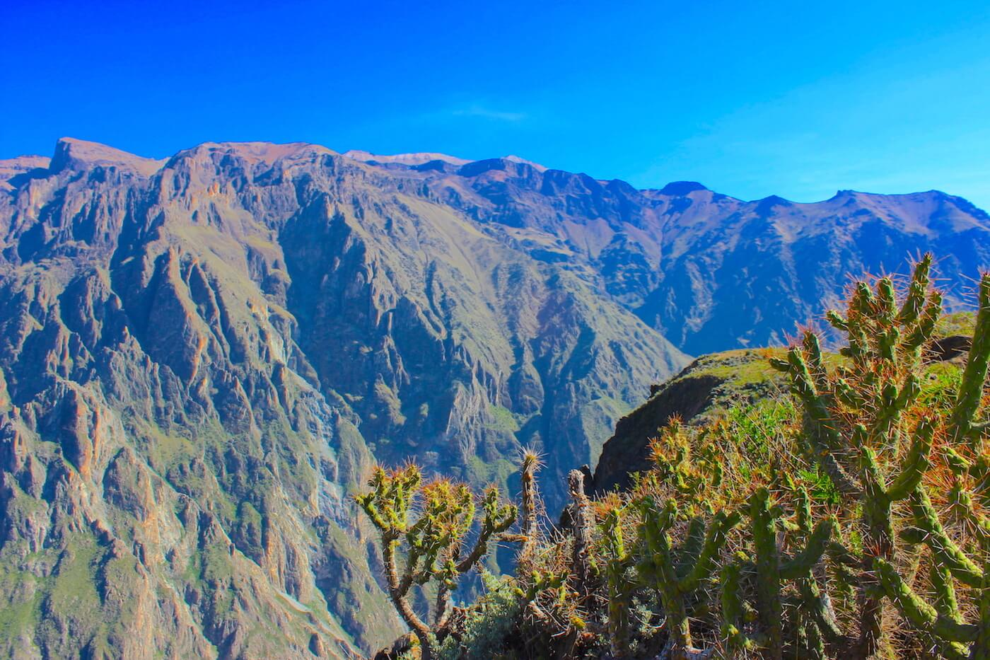at the colca canyon