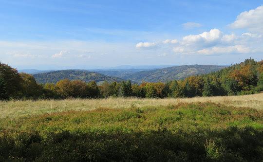 Panorama północno-zachodnia z Hali Kamińskiego w kierunku doliny Koszarawy.