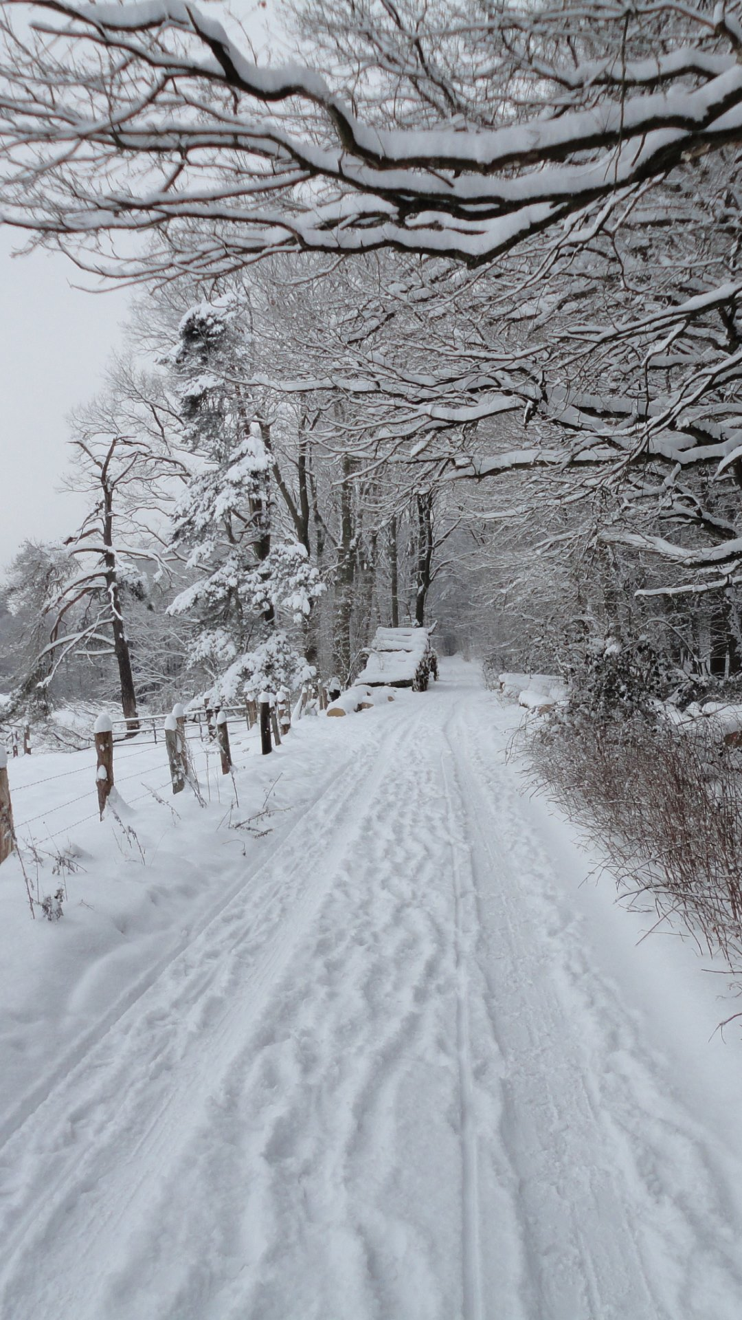 snow path wallpapers - photo #26