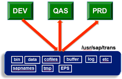 Essential Basis for SAP (ABAP, BW, Functional) Consultants Part-II