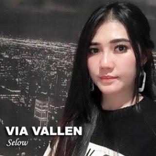 Download Lagu MP3 Video Goyang HOT Terbaru Live Lirik Lagu Via Vallen - Selow