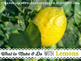 What to Make and Do with Lemons