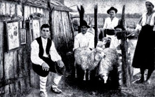 Maglavit - 1935