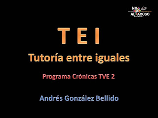 http://www.noalacoso.org/TEI.pdf