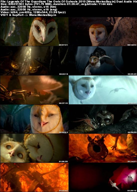 Legends Of The Guardians The Owls Of Gahoole 2010 Dual Audio Hindi 720p BluRay 800MB
