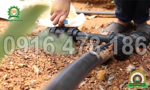 Mở van nước của Hệ thống tưới nhỏ giọt 3A