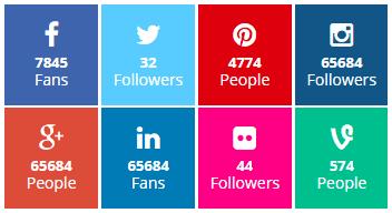 Takipçi Sayısını Gösteren Sosyal Medya Kodu