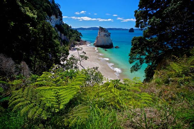 Cathedral Cove - Nueva Zelanda http://goo.gl/xkRvPZ