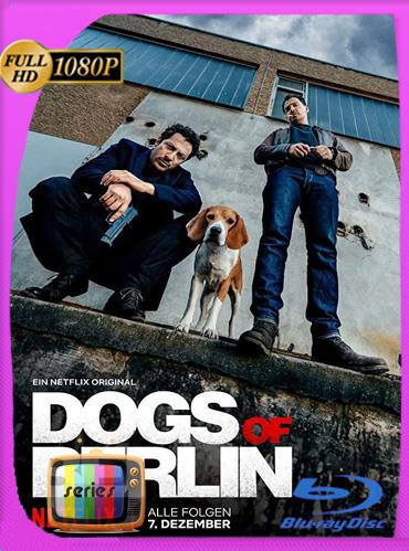 Perros de Berlin Temporada 1HD [1080p] Latino Dual [GoogleDrive] TeslavoHD