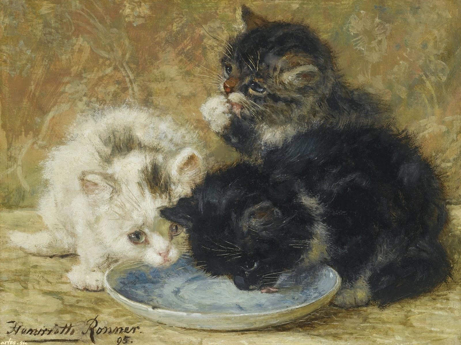 Жанр картинки, кот