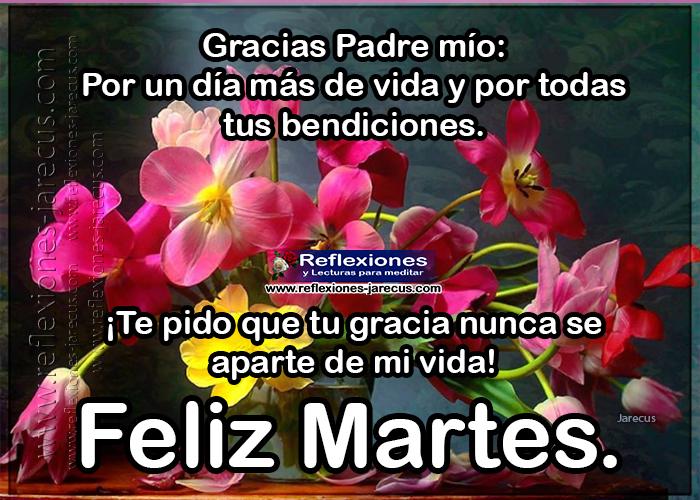 Feliz martes, gracias Padre mio por un día más de vida y por todas tus bendiciones. Te pido que tu gracia nunca se aparte de mi vida.