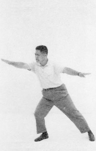 Tai Chi Chuan (Square Form) 97. Wave Hands In Clouds (Turning Hands)