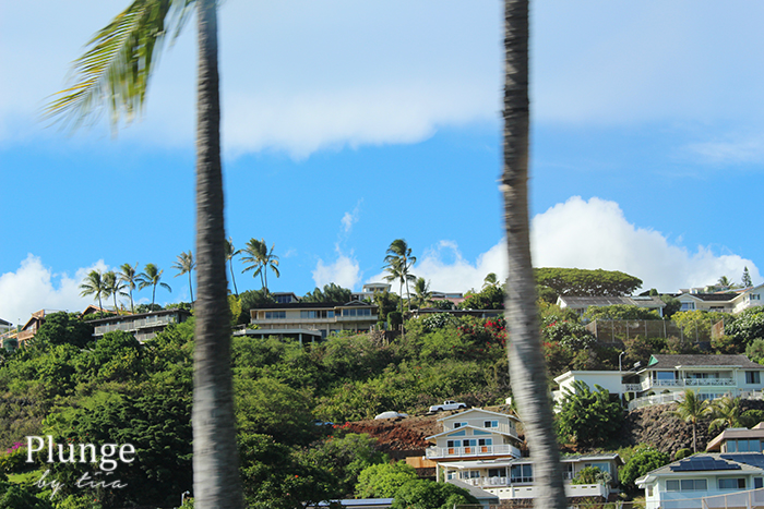 Neighbourhood in Oahu