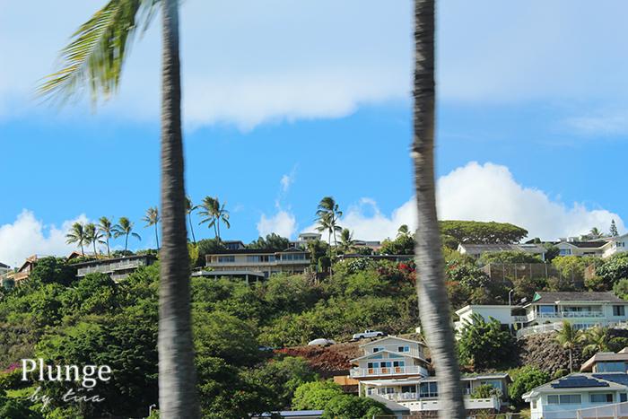 Neighbourhood in Oahu