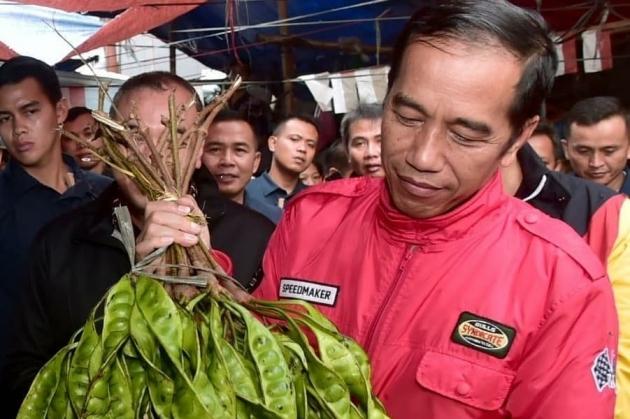 Harga Sawit Turun, Jokowi Minta Petani Tanam Jengkol dan Petai
