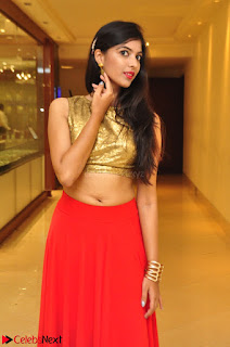 Khushbu telugu model in Golden Choli Top red Skirt At Desire Exhibition Launch