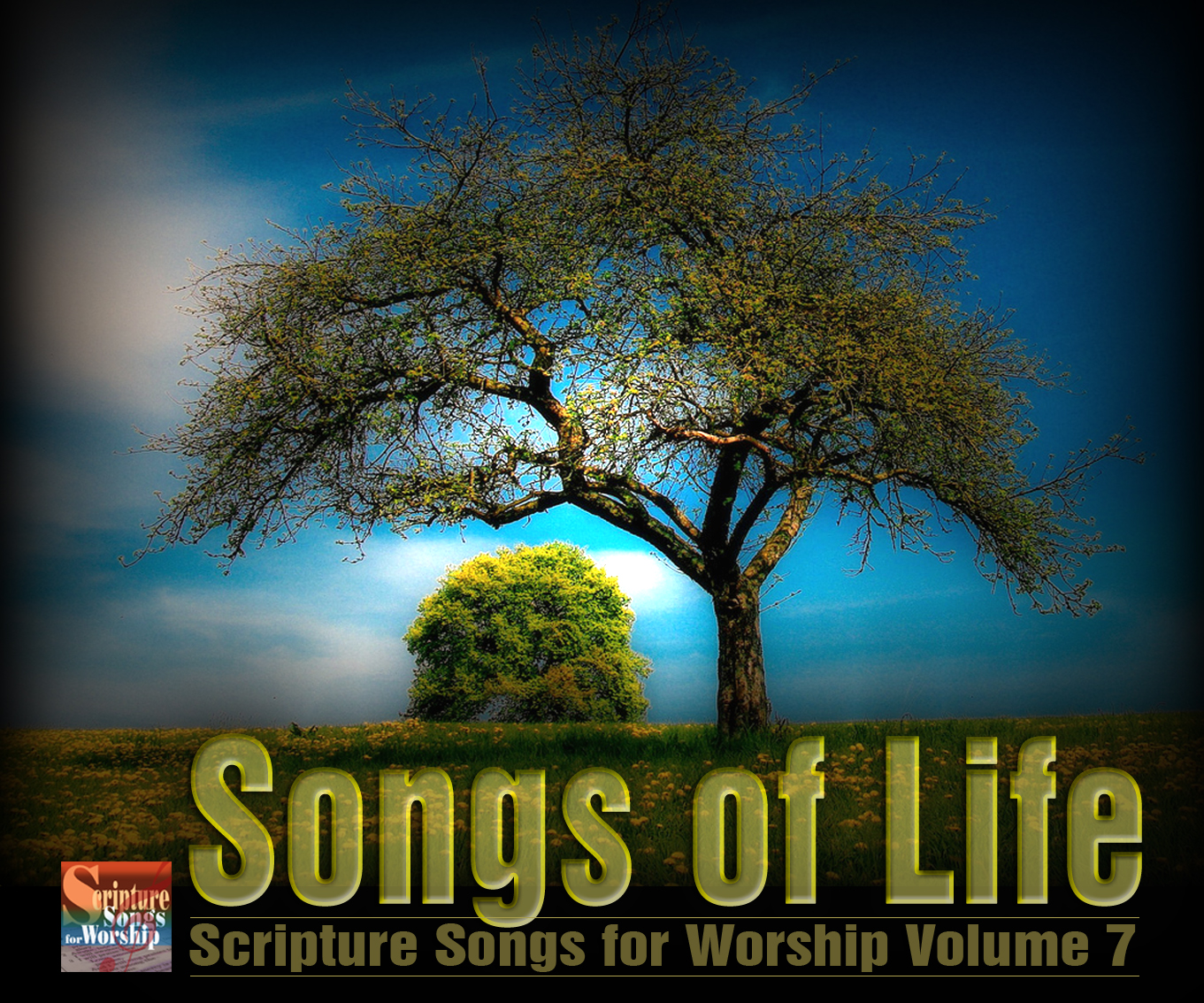 Scripture Songs for Worship : Songs of Life - NKJV Scripture