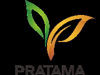 Lowongan Keraj PT. Pratama Nusantara Sakti Maret 2018