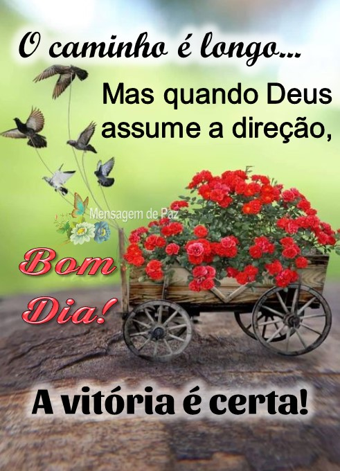 O caminho é longo...  Mas quando Deus  assume a direção,  a vitória é certa!  Bom Dia!