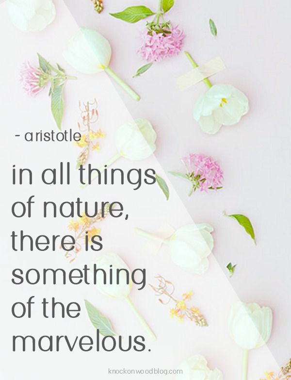 Aristotle Nature Quote