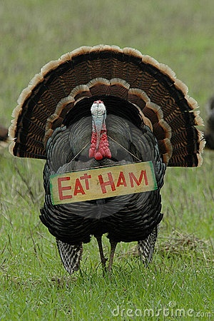 Thanksgiving Turkey Eat Ham Protest Joke