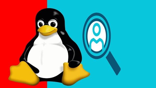 كيفية استخدام الأمر whois في نظام Linux