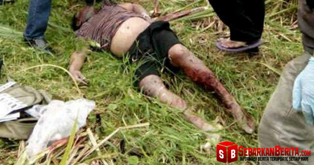 Sadis , Mata dan Mulut Dilakban, Tangan Diikat, Korban Pembunuhan Ini Dibuang ke Kebun Tebu PTPN II, Desa Bulu Cina, Kecamatan Hamparan Perak.