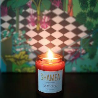 http://festivalartnature.blogspot.fr/2018/01/shamea-bougies-artisanales-eco.html