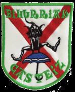 Bihurriak