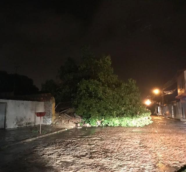 Chuva com fortes ventos deixa um rastro de destruição em Chapadinha