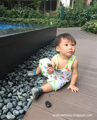 Baby on the Rocks