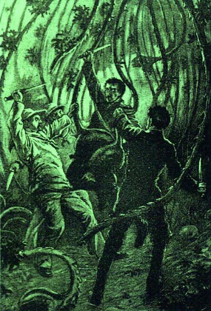 Tanaman Karnivora Pemakan Manusia Paling Mengerikan