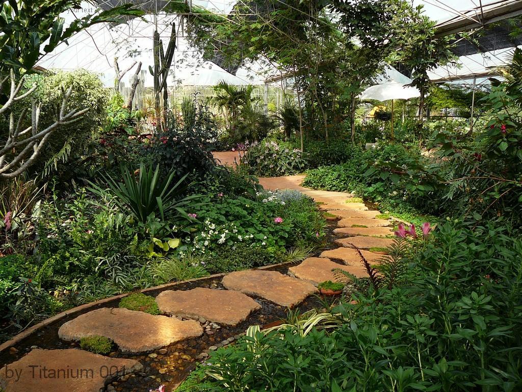 ทางเดินในสวน สวนแสนรัก