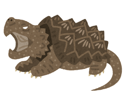 ワニガメのイラスト
