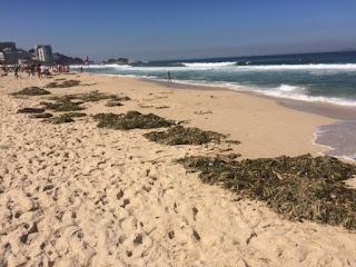 Gigogas na praia de Ipanema