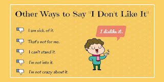 """Other Ways To Say """" I don't Like It """""""