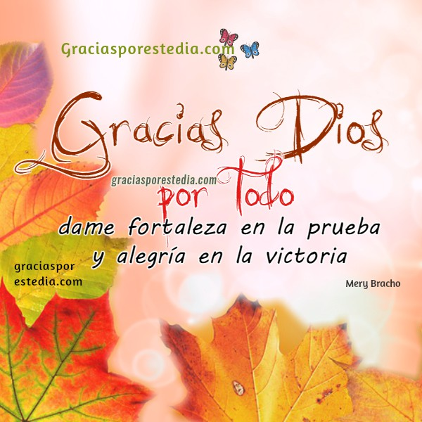 Frases de acción de gracias a Dios por este día, oración corta con imágenes de gracias al Señor, mensajes bonitos cristianos por Mery Bracho.